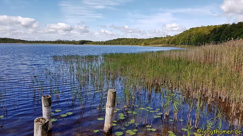Wandern Mecklenburgische Seenplatte - Am Priesterbäker See