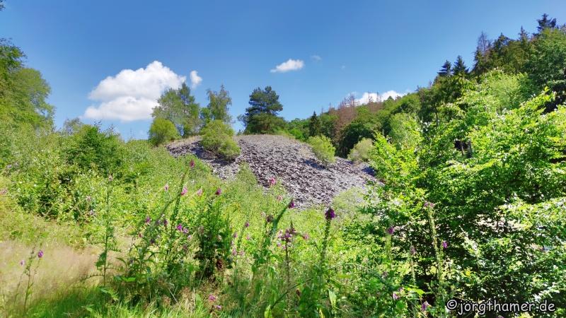Schieferabraumhalde Grube Rosit bei Nauroth