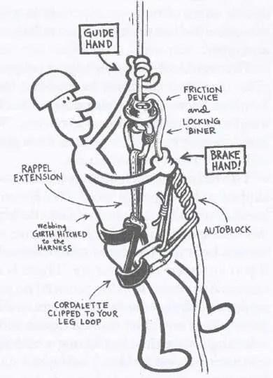 Peace Sports 110cc Wiring Diagram