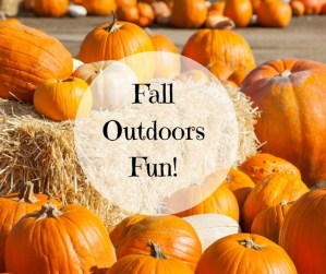 Outdoor fall activities in tampa