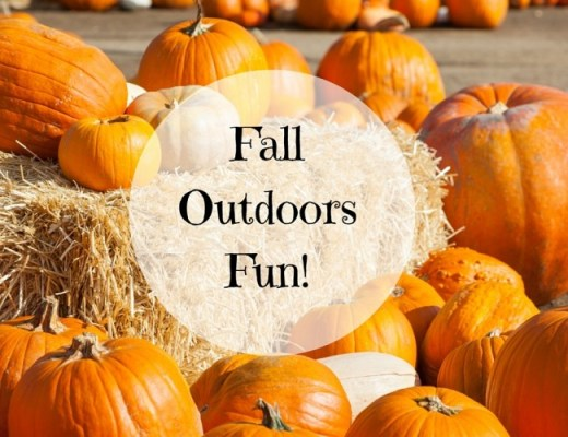 Outdoor fall activities in tampa