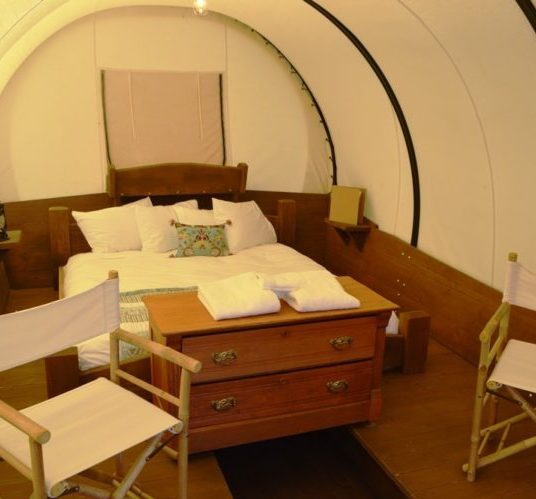 inside wagon