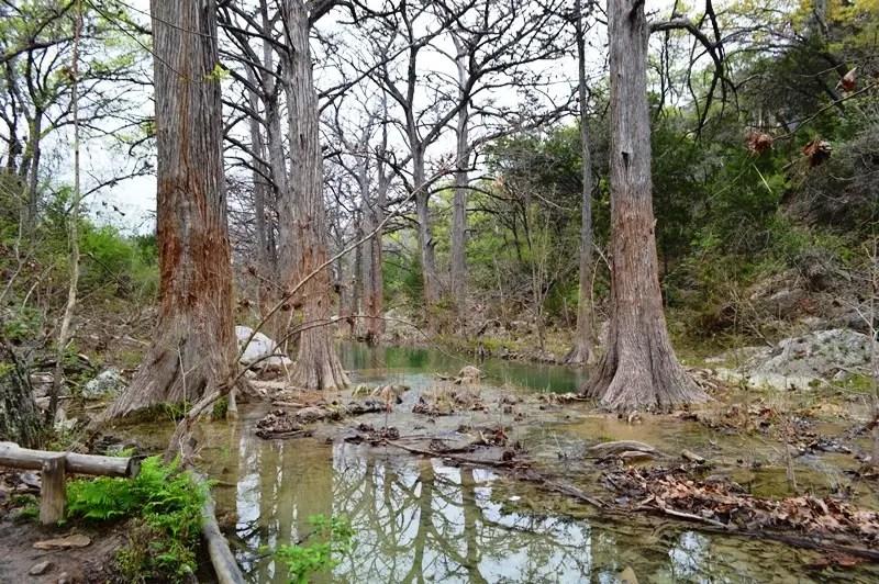 hamilton woods