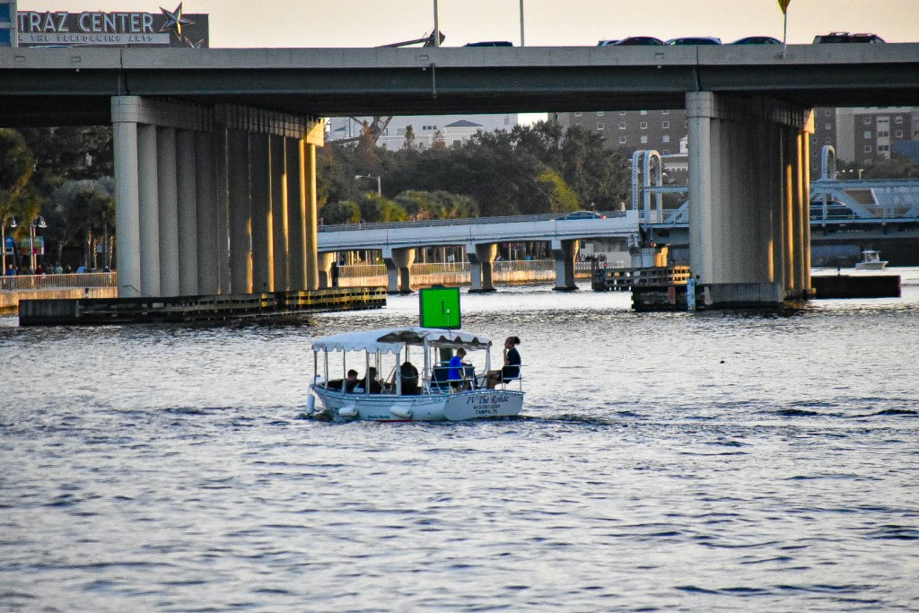 adventurous things to do in tampa things to do in tampa for superbowl