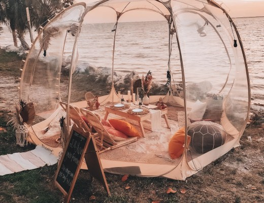 pop-up picnic