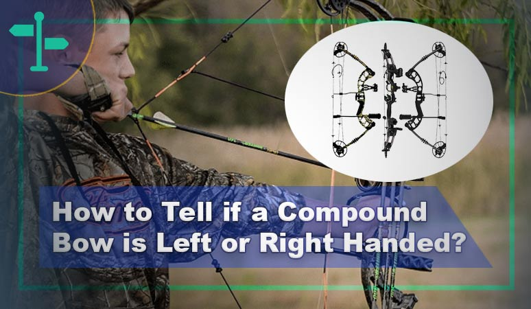 How to Tell if a Compound Bow is Left or Right Handed?