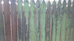 Power Washing a Fence Mt Juliet TN