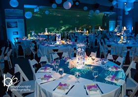 NC Aquarium - Outer Banks Wedding Venue