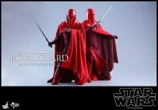 Hot-Toys-Star-Wars-Royal-Guard-003