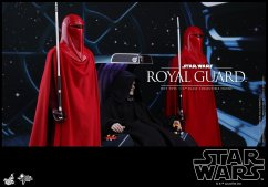 Hot-Toys-Star-Wars-Royal-Guard-004