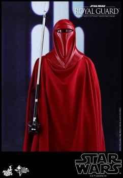 Hot-Toys-Star-Wars-Royal-Guard-006