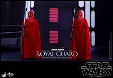 Hot-Toys-Star-Wars-Royal-Guard-009