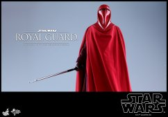 Hot-Toys-Star-Wars-Royal-Guard-011