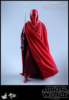 Hot-Toys-Star-Wars-Royal-Guard-014