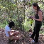 SOD Blitz: Volunteers take on Sudden Oak Death