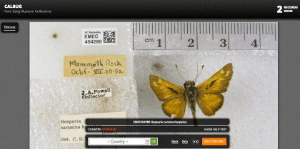 Many of the field notes do not include all of the requested information. For example, this label for the butterfly Hesperia harpalus only indicates it was found at Mammoth Rock, Calif. A simple Google search verifies this is in Sonoma County.