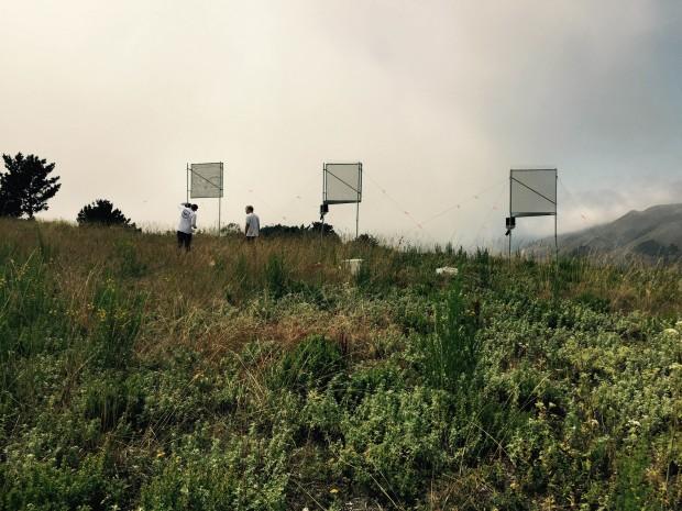 Fog catchers line the hillside at Glen Deven Ranch in Big Sur. Photo: Dan Fernandez