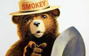 Has Smokey Bear's message of forest fire prevention been taken too far? Photo credit: 	US Department of Agriculture via Flickr.
