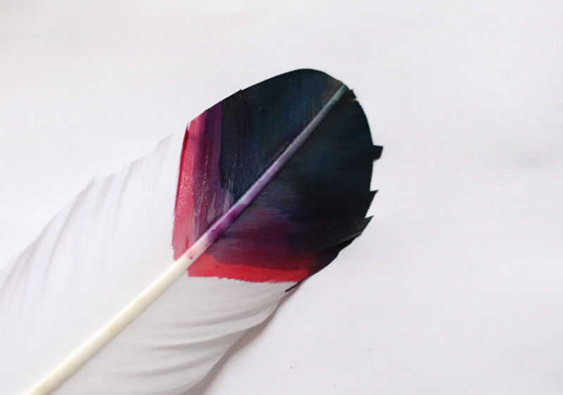 diy-painted-feathers-2