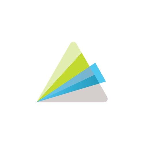 Logo Animoto