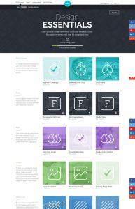 sshot_canva_designessentials
