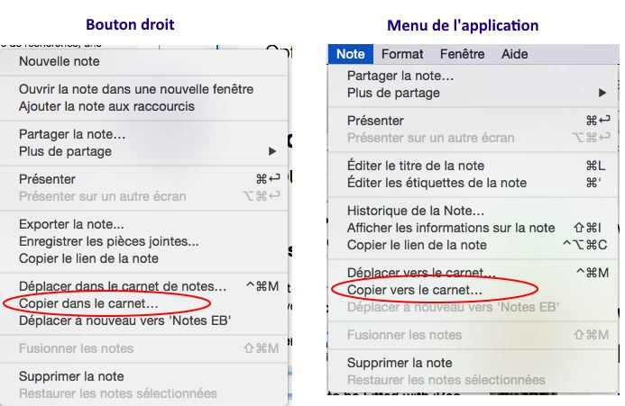 Evernote copier modèles notes
