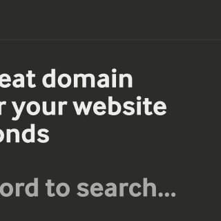 agile domain search