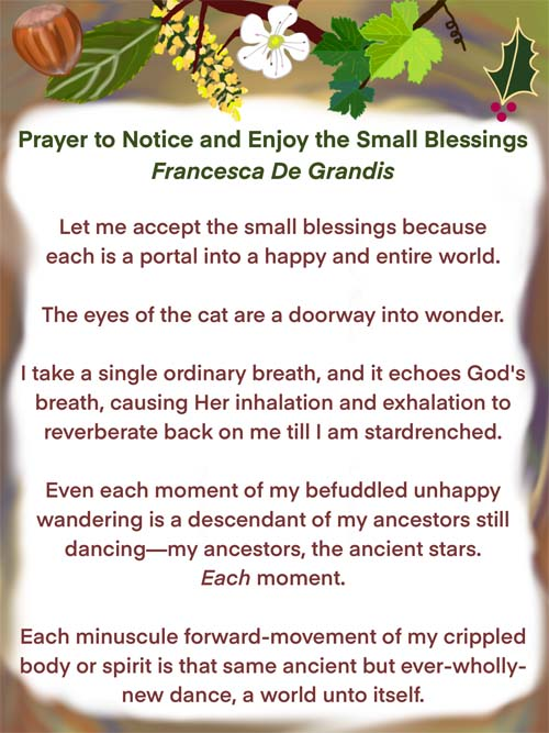 Prayer to Notice and Enjoy the Small Blessings, Francesca De Grandis. Let me accept the small blessings because each is a portal into a happy and entire world. The eyes of the cat are a doorway into wonder. I take a single ordinary breath, and it echoes God's breath, causing Her inhalation and exhalation to reverberate back on me till I am stardrenched. Even each moment of my befuddled unhappy wandering is a descendant of my ancestors still dancing—my ancestors, the ancient stars. Each moment. Each minuscule forward-movement of my crippled body or spirit is that same ancient but ever-wholly-new dance, a world unto itself.