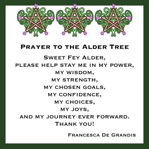 Prayer to an Alder Tree Sweet Fey Alder, please help stay me in my power, my wisdom, my strength, my chosen goals, my confidence, my choices, my joys, and my journey ever forward. Thank you! —Francesca De Grandis