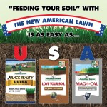 The New American Lawn Plan: A Revolutionary Approach to Lawn Care