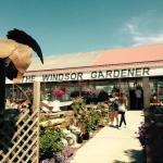 Brewing Garden Center Success