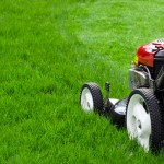 Scotts Spring Lawn Care Tips