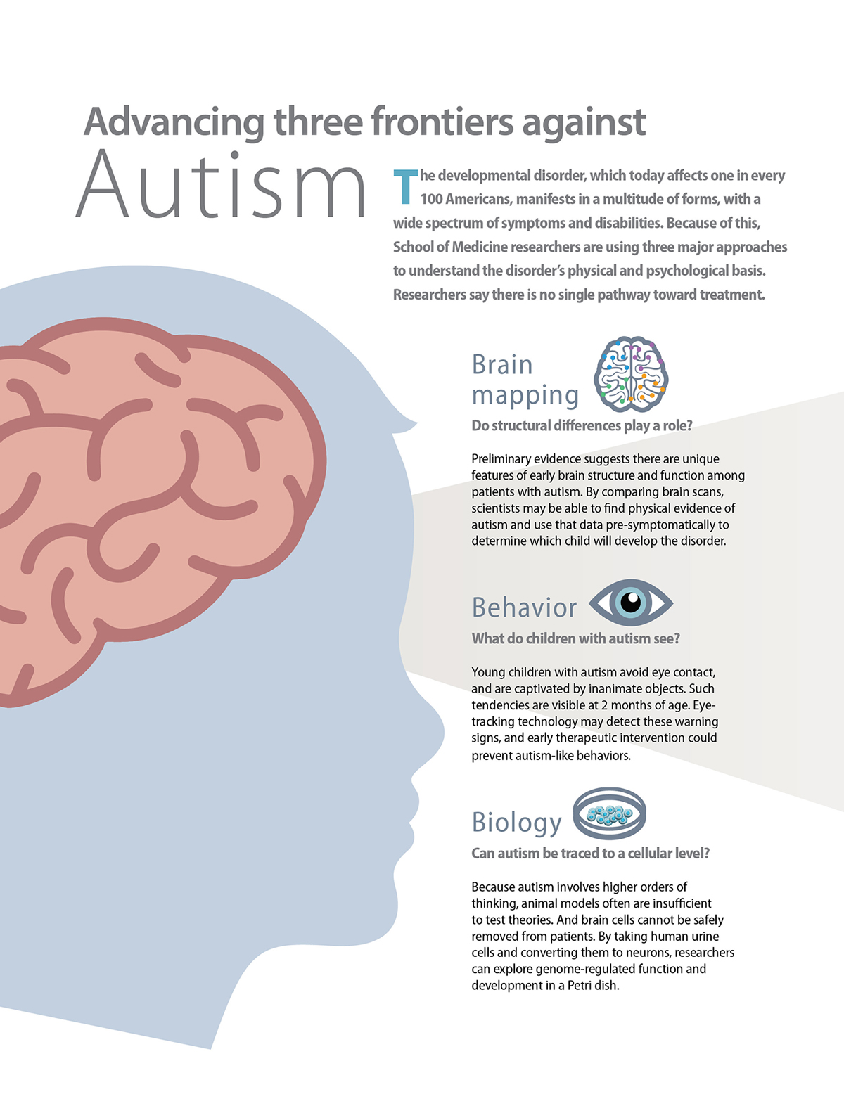 hight resolution of gray divider three frontiers against autism