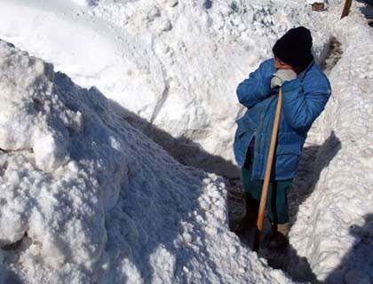 People Seek for  their Survival in Winter
