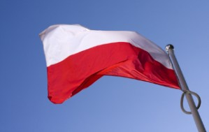 Polish government may facilitate overseas gay marriages