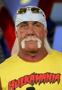 Hulk Hogan denies gay claims