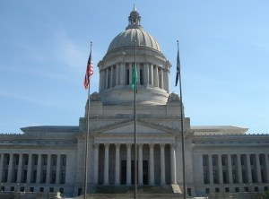 Washington state legalises gay marriage