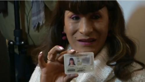 Bolivia trand ID cards