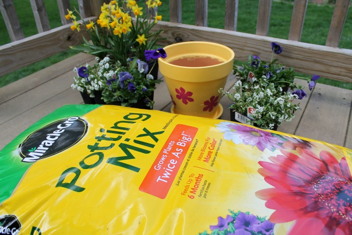 How to Plant Beautiful & Full Flower Pots
