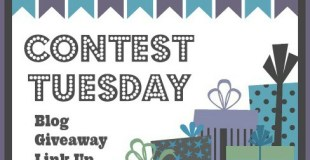 Contest Tuesday Blog Giveaway Link Up