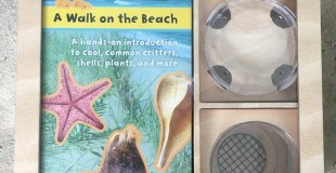 Into the Field Guide: A Walk on the Beach is the Treasure Box Little Beachcombers Need