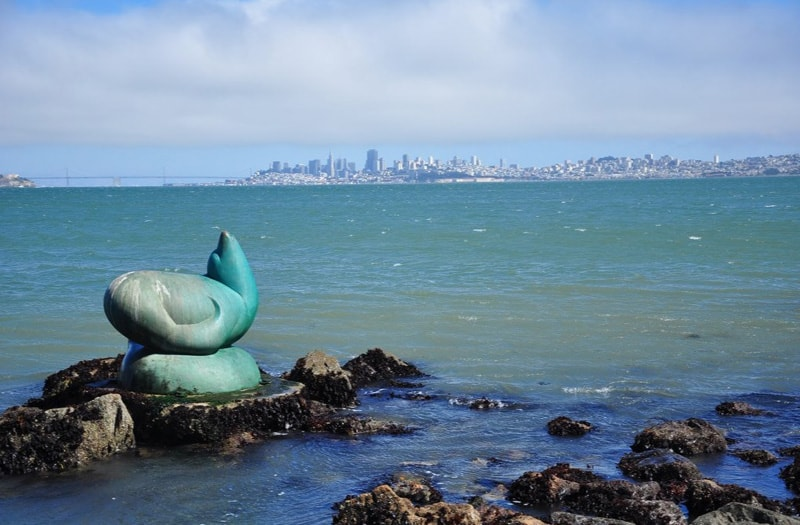 Postcards From Sausalito California Out Of Office