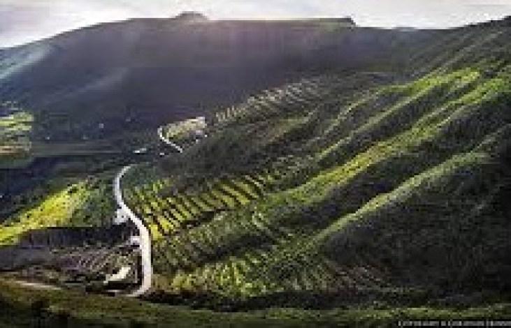 tabayesco-turismo-rurale-lanzarote