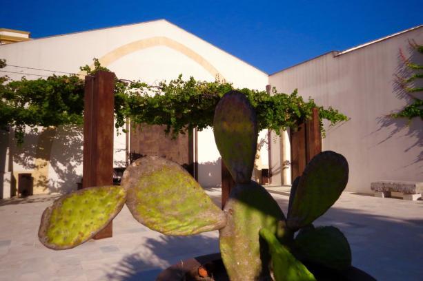 cactus-giardino-marsala-florio