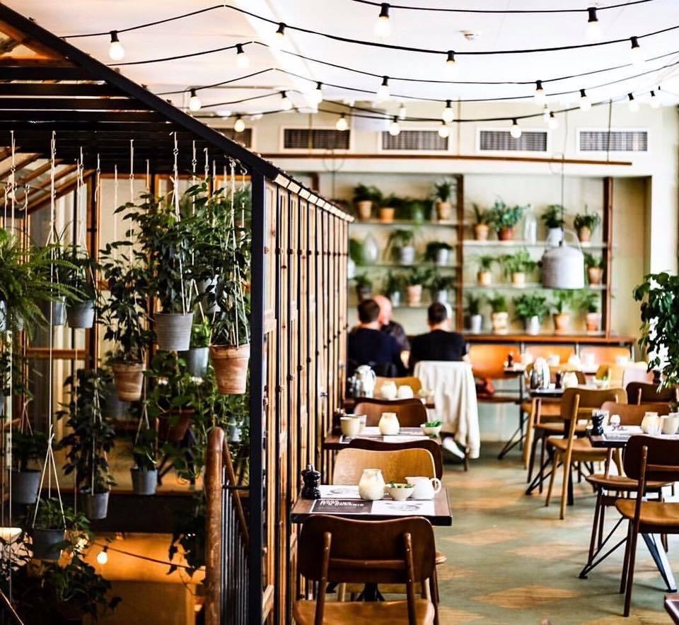 copenaghen-ristorante-vegetariano-green