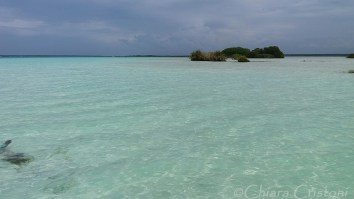 Crystal clear waters in the Bacalar lake