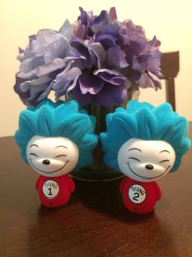 Barnes & Noble Exclusive Flocked Thing 1 & Thing 2