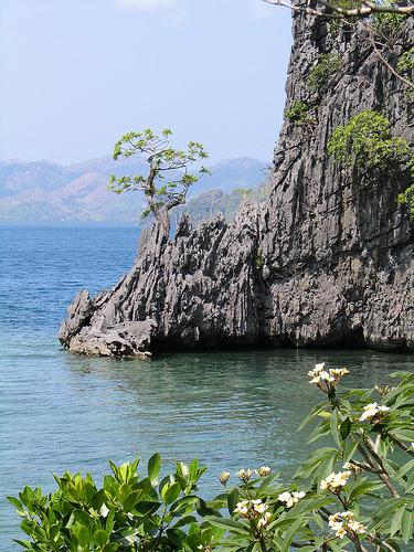 Calachuchi Beach Coron Palawan
