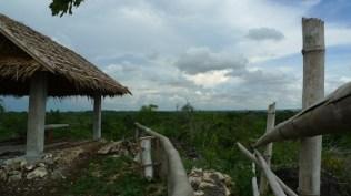 Viewpoint in Dagsaan Ecopark