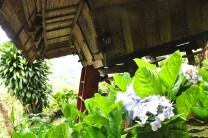 Accommodation at Native Village Inn & Restaurant